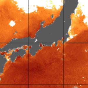 【釣り】潮やまづめだけじゃなくて海水温の高低も関係あるかもという話