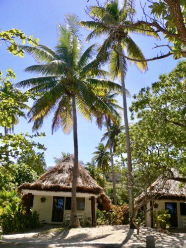 【ディスカバる】エドの無人島生活ロケ地、フィジーへの旅行費用などを調べた