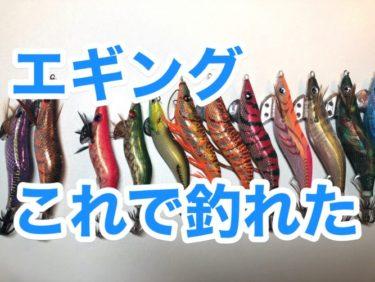 【エギング方法】釣れないイカを釣るために試した5つのこと