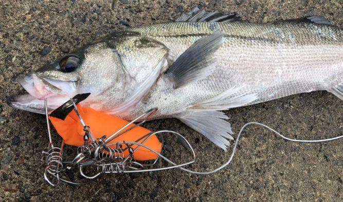 魚さばき道具
